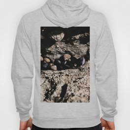 Waiting for the tide Hoody