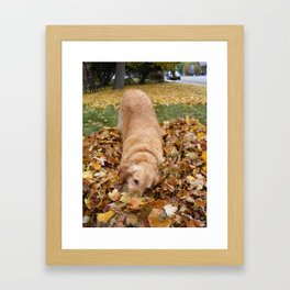 Playing in the Leaves Framed Art Print