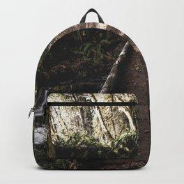 Hoh Rainforest River Trail Backpack