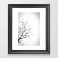 Lonely Tree 2 Framed Art Print
