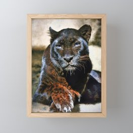 The Black Leopard Framed Mini Art Print
