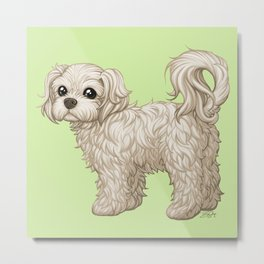 Sushi is a Sweet Ball of Fluff Metal Print