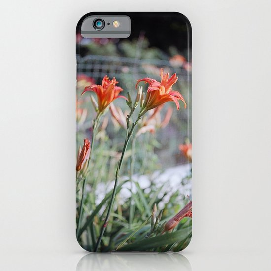 Day Lilies iPhone & iPod Case