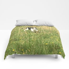 Happiness is running wild and free, and not letting your feet touch the ground! Comforters