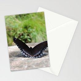 Butterfly on Rock Stationery Cards