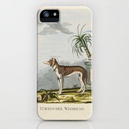 Brasch, Magnus, Turkish Windhound 1789 iPhone Case