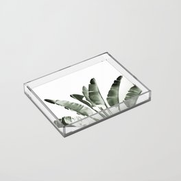 Traveler palm Acrylic Tray