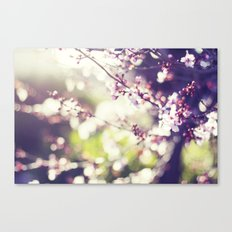 Daydreaming. Canvas Print