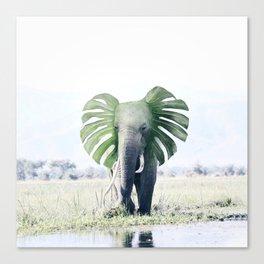 Monstera Elephant Canvas Print
