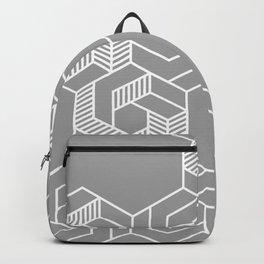 Hex 604 Backpack