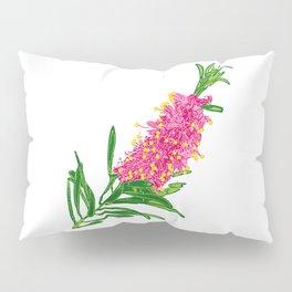 Beautiful Pink Australian Native Floral Illustration Pillow Sham