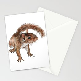 Twitchy-nosed Squirrel Stationery Cards