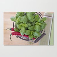 spice Canvas Prints featuring Spice by Skye Cascadea