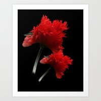two red poppies on black Art Print