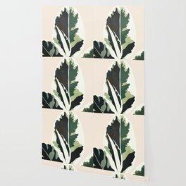 Ficus Wallpaper