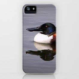 Shoveler Duck iPhone Case