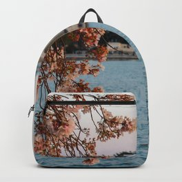 Cherry Blossoms at the Jefferson Backpack