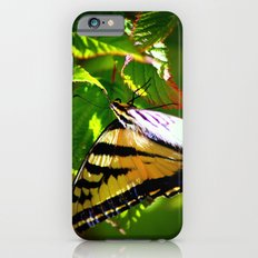 Butterfly- close and personal iPhone 6s Slim Case