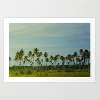Puerto Palms Art Print