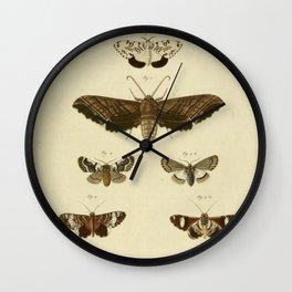 Vintage Moths Wall Clock