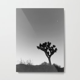 JOSHUA TREE XVIII (B+W) Metal Print