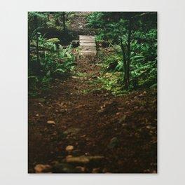 Down the trail Canvas Print