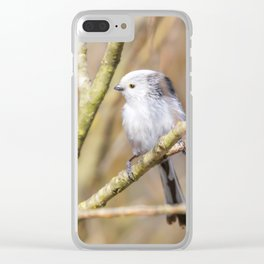 Long-tailed tit on branch (Aegithalos caudatus) Cute little Bird Clear iPhone Case