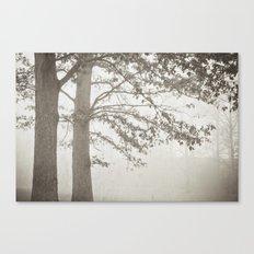 Illusion - B&W Canvas Print