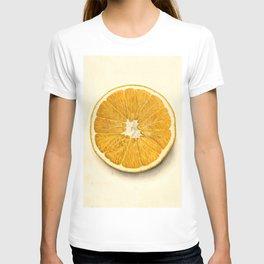 Vintage Illustration of a Grapefruit T-shirt