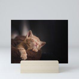 Leo Mar Suerte is sleepy. Mini Art Print