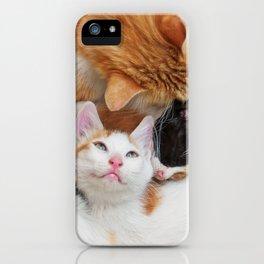 Cat family iPhone Case