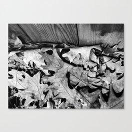 'Autumn Leaves' Canvas Print