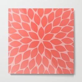 Coral Chrysanthemum Metal Print
