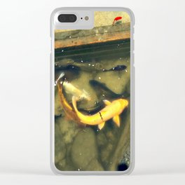 Carp in the Pond Clear iPhone Case
