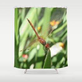Red Skimmer or Firecracker Dragonfly Shower Curtain