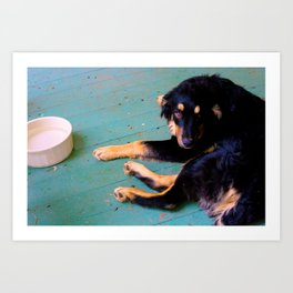 Dog | Rudy Art Print