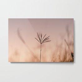 Gradient Skies Metal Print