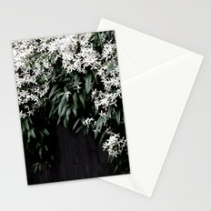 Clematis Armandii Stationery Cards
