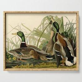 Mallard Ducks Serving Tray