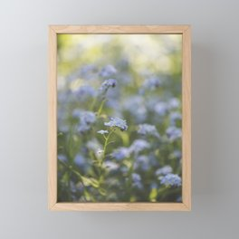 Forget-me-not meadow Spring Flower Flowers Floral Framed Mini Art Print