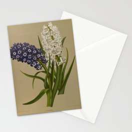 Arendsen, Arentine H. (1836-1915) - Haarlem's Flora 1872 - Hyacinths 1 Stationery Cards