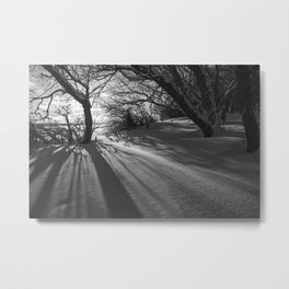 Shadows in the Snow 4 Metal Print