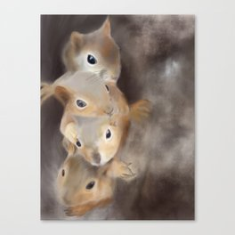 We're all a little squirrelly - woodland series Canvas Print