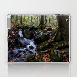 Autumn Forest Stream IV Laptop & iPad Skin