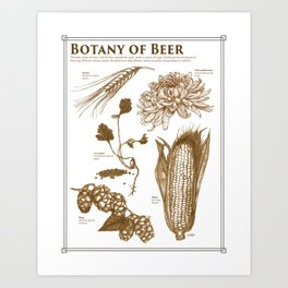 Botany of Beer Art Print