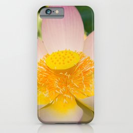 Loto flower iPhone Case