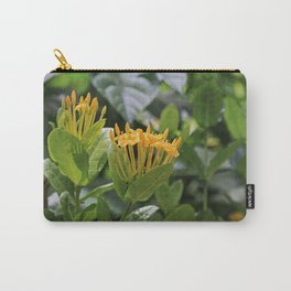 Reinventing Mona Carry-All Pouch