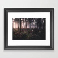 Wondering in Woods Framed Art Print