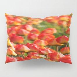 Duvet Cover 406D Pillow Sham