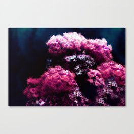 The Sea Anemone Floral Bouquet Canvas Print